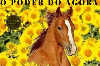DICA DE LIVRO: O PODER DO AGORA