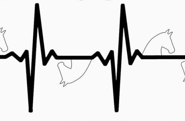 A coerência do seu ritmo cardíaco pode influenciar na maneira como você monta.